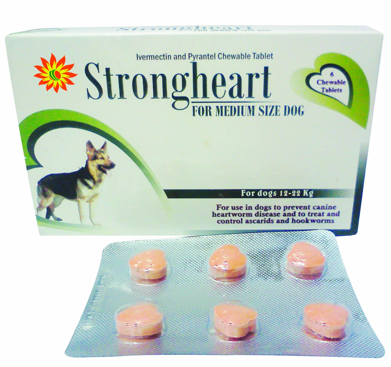 STRONG HEART (FOR MEDIUM SIZE DOGS)