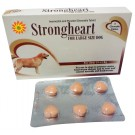 STRONGHEART (FOR LARGE DOGES)